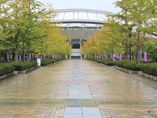 広島ビッグアーチの紅葉