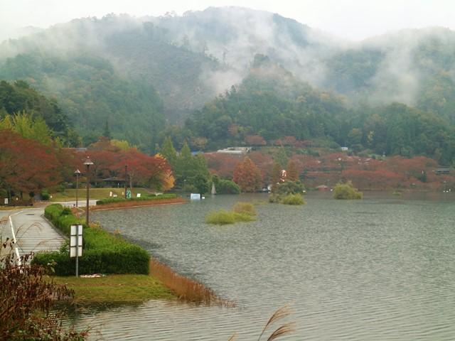 土師ダムの紅葉、のどごえ公園