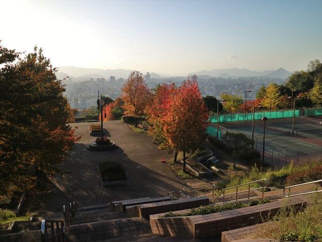 竜王公園の紅葉