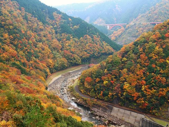 温井ダムの紅葉